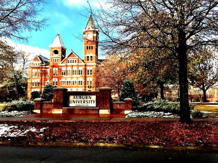 White Christmas at Samford Hall, Auburn University, Blue Moon Photography Winter 2018 Christmas Spirit Nature Photography Auburn Tigers Clock Tower Samford Hall Snow Covered Auburn University Architecture Building Exterior Tree Built Structure Building Sky Nature No People History
