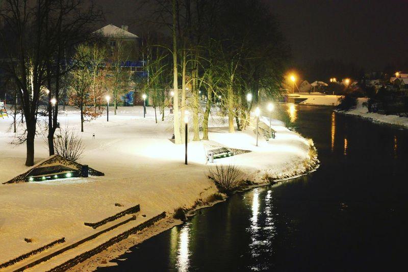 Night lights Tree Water Illuminated Winter Snow Cold Temperature Sky Shore Calm Horizon Over Water Scenics Idyllic Weather