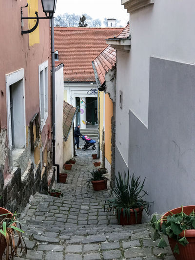 Architecture in Szentendre, Hungary Alley Architecture Building Building Exterior Built Structure City Courtyard  Day Direction Footpath House Nature No People Outdoors Plant Potted Plant Residential District Roof Tile Street The Way Forward Town Wall