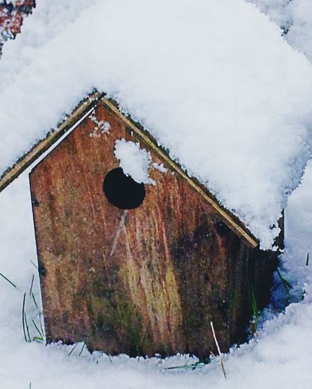 Birdhouse In Snow Snow In January