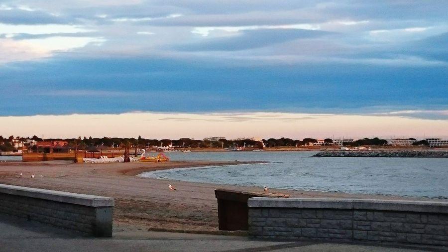Panoramique du coucher de soleil sur la plage habité par les goélands