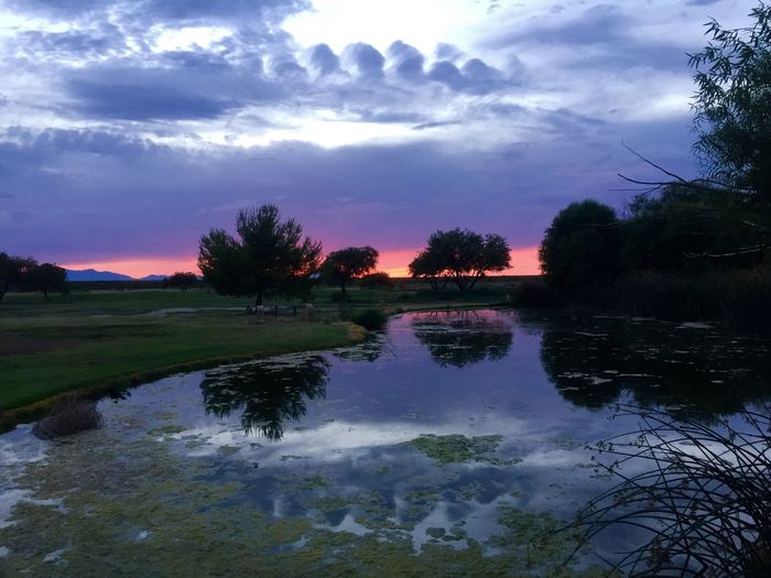 Sunset in Safford, Arizona Trees Lake Color Monsoonseason Reflection Reflections Arizona Sky Nature Beauty Skies Light Beauty In Nature Nature Photography Arizona Clouds And Sky Colors Outdoor Photography Clouds Safford Landscape_photography Outdoors
