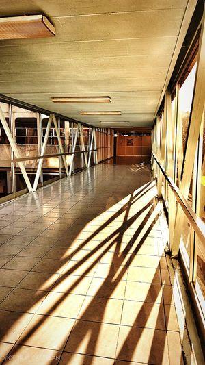"""Puente a laboratorios, CICS UMA"" Victormcastelan EyeEm Gallery EyeEm Best Shots EyeEmBestPics Sunlight Day Architecture No People EyeEm Selects Architecture Sunset CICS_UMA CICS_UMA Cicsma Cicsuma IPN IPN ❤️"
