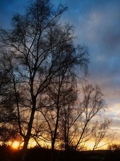 Sonnenuntergang Sunset Sky