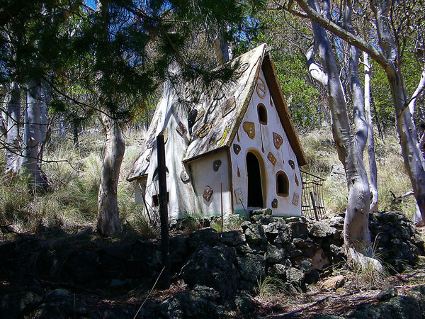 Architecture Brother Grimm Brother Grimm Building Exterior Built Structure Day Flower Fun Time With My Best Friend Growth Gumtrees Knusperhäuschen Little House In The Woods Nature Nature Photography Nature Walk ♥ No People Outdoors Tree