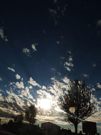 Sky Shining