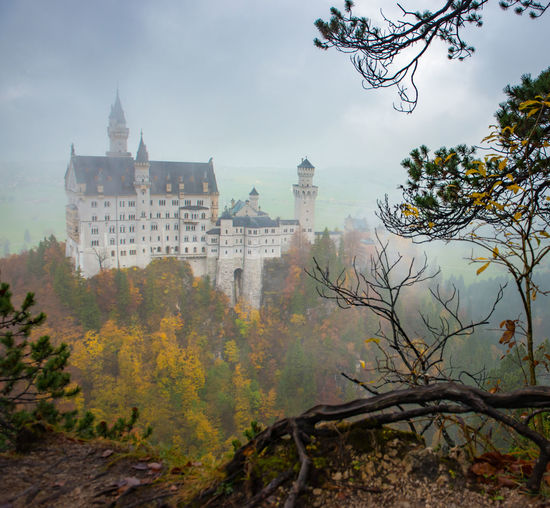 Neuschwanstein Castle with Autumn colors, Fussen, German Architecture Built Structure Building Exterior Tree Plant Building Nature Fog No People Sky History Autumn The Past Day Outdoors Travel Destinations Change Branch Tower Pollution