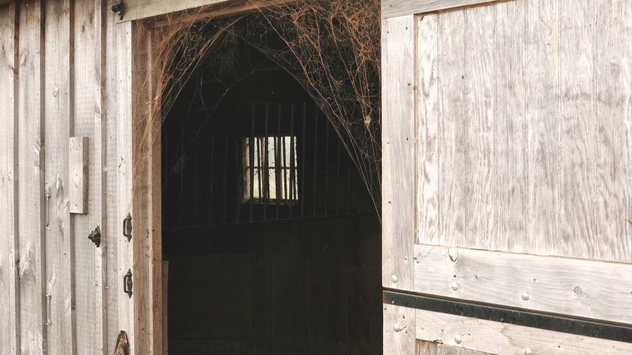 Light And Shadow Spider Web Barn EyeEm Selects Architecture Built Structure Entrance Window Day Door Weathered Wall - Building Feature Sunlight Abandoned Building No People Wood - Material Old Protection