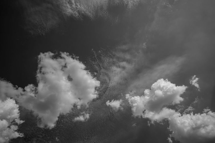 Dramatic Sky Beauty In Nature Black And White Cloud - Sky Day Dramatic Sky Environment Full Frame Hell Und Dunkel Idyllic Low Angle View Meteorology Nature No People Non-urban Scene Outdoors Plant Scenics - Nature Sky Sunlight Tranquil Scene Tranquility Tree