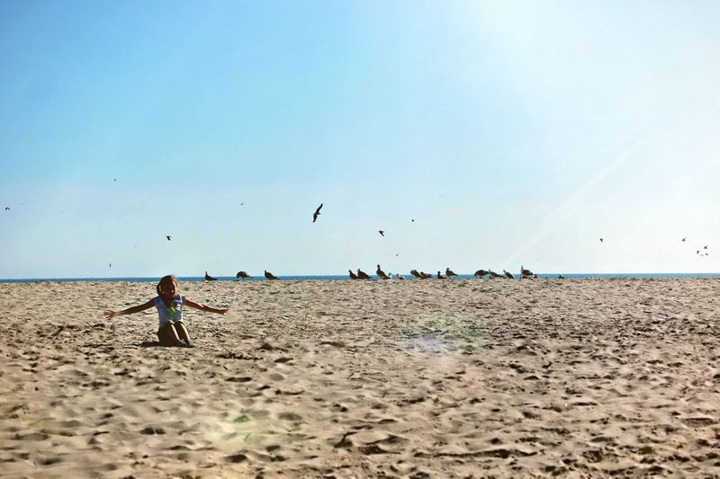 Beach Sand Sky Sea Bird Flying One Person Flock Of Birds Summer Nature Clear Sky Outdoors Beauty In Nature Vacations Child Childhood Activity Healthy Lifestyle Motion Vitality EyeEm Selects