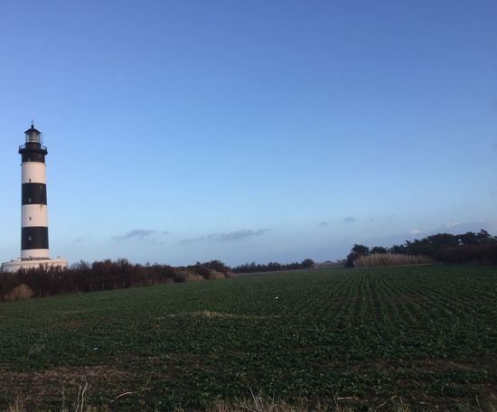 Côté terre... Lighthouse Agriculture Field Tranquility Growth Day Copy Space Nature Landscape Clear Sky Outdoors
