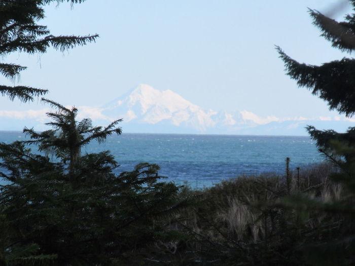 Washington Pacific Northwest  Salish Sea Strait Of Juan De Fuca Beauty In Nature Environment Mountain  Nature No People Outdoors Scenics - Nature Sea Tranquil Scene Tranquility Vocanic Peak Water