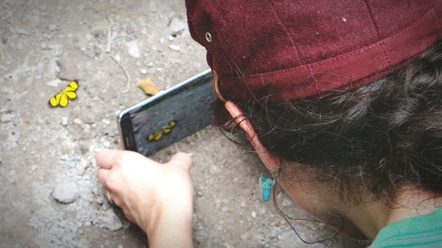 Rear view of woman photographing butterfly with smart phone on ground