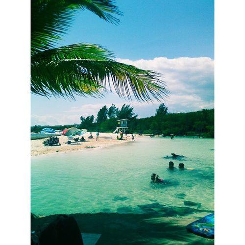 👩💃🐬🌴🌴🌴🌅 Playadelcarmen Beach Sunny Mexico ❤ Quintanaroo Klangkarussell