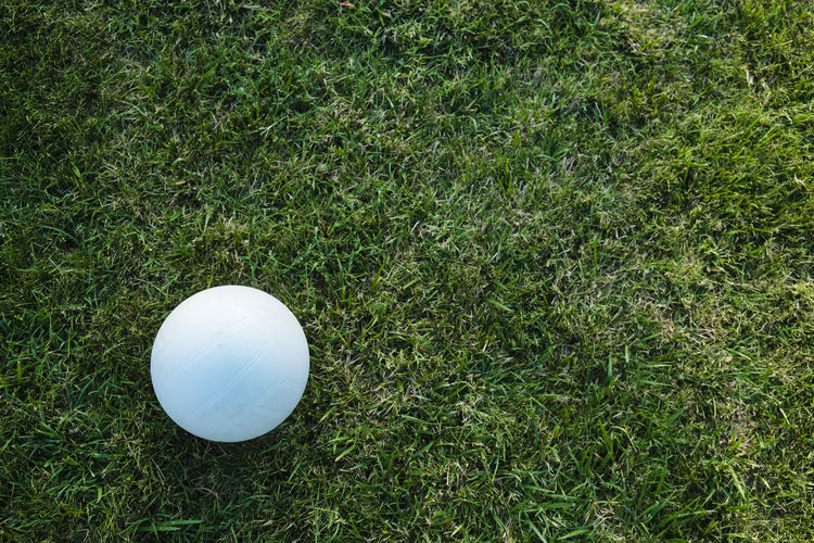 High angle view of white ball on grassy field