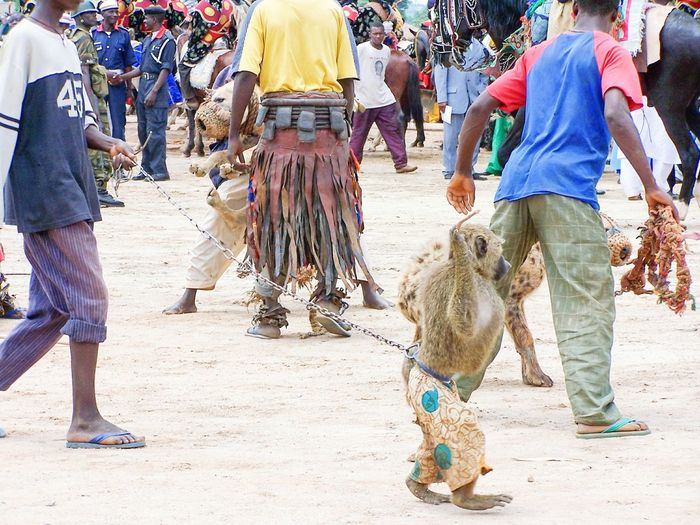 Service Animals Monkey NigeriansShoot in Abuja, Nigeria, in 2007.