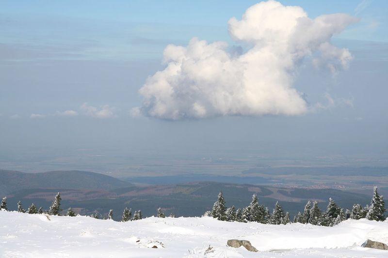 Winter Harz Bilder Snow ❄ Snow Sky And Clouds Clouds And Sky Clouds Sky BrockenBlick Sachsen-Anhalt Harz OverviewPoint Overview Brocken