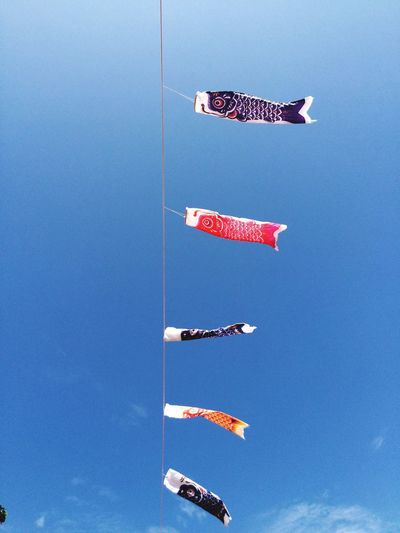 Low angle view of windsocks blowing in wind against clear blue sky