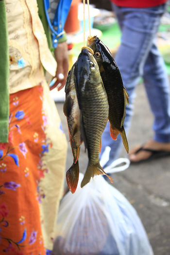 People holding fish