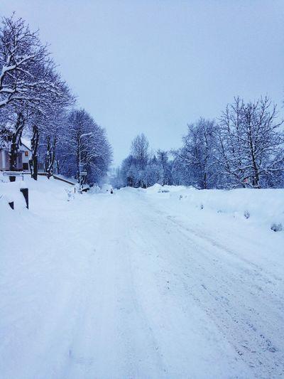 Vanishing Point Snow Christmas Walking Around