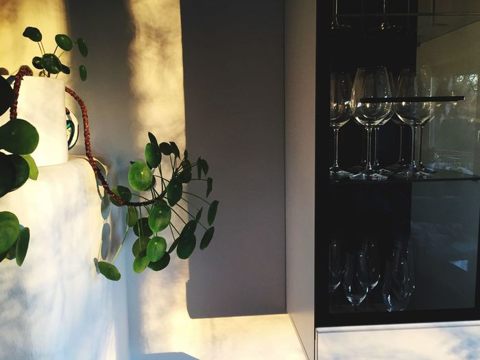 Interior Design Sunshine Minimalism Design Wine Glass - Material Indoors  Glass Reflection No People Transparent Window Plant Home Interior Decoration Freshness Still Life
