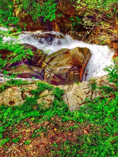 Upahead Close-up Flowing Motion Blur Rock - Object Stream Natural Beauty Creekside Trail Waterfalllovers Waterfall #water #landscape #nature #beautiful Nature Photography Japan Photography InKaratsu