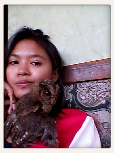 this me and my baby owl... Love Owl Animal