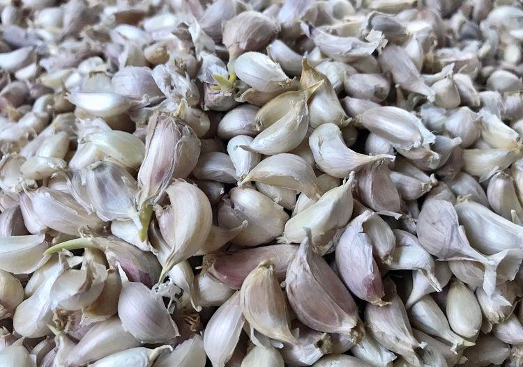 Garlic Full