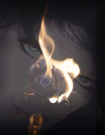 Bright Burning