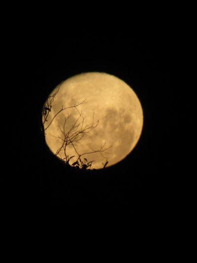 Súper Moon