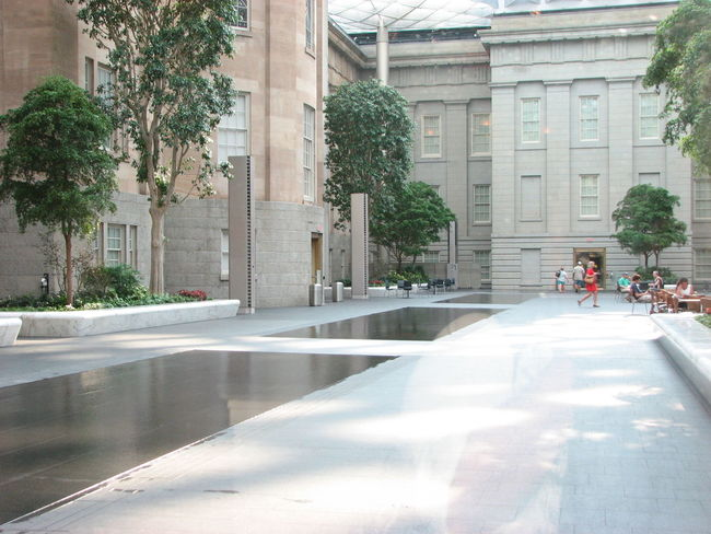 Architecture Building Building Exterior Built Structure Casual Clothing City City Life City Street Day Full Length Indoorsphotography Long Museum Of Modern Art Museum Of Natural History Outdoors Road Street Summer Views Tree Walking