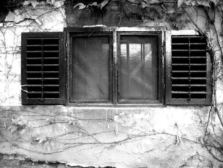 Building Exterior Built Structure House No People Tendriled Weathered Window