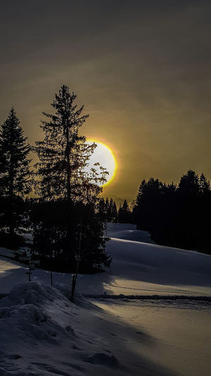 Silhouette trees on snow covered land against sky during sunset