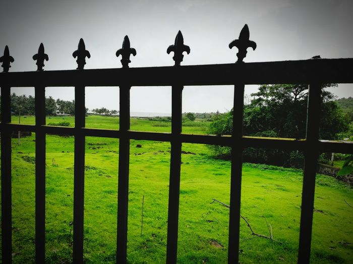 Gateway to freedom Bird Peacock Military Politics And Government Tree Silhouette Statue Army Rural Scene Gate