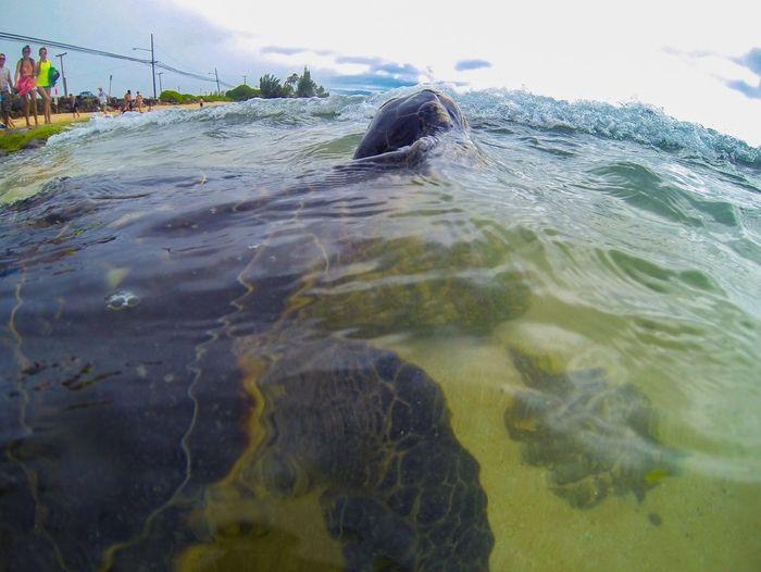 Waves splashing in water