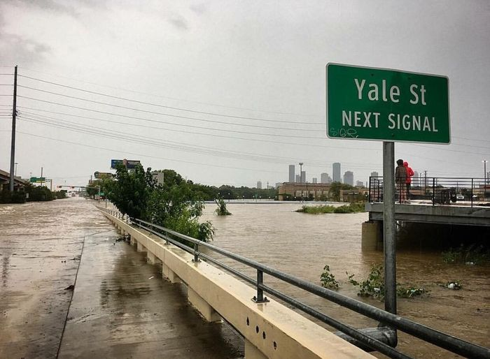 The Week On EyeEm Dallas,TX Yale Street Text Western Script Communication Built Structure Architecture Travel Destinations Railing Travel Transportation Bridge - Man Made Structure Sky Building Exterior Day Outdoors Road Sign Tree Urban Skyline Cityscape No People City (null)Hurricane Harvey 2017