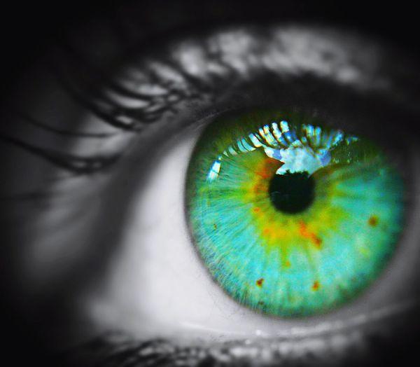 Human Eye Eyelash Human Body Part Iris - Eye Close-up Eyeball Beauty Green Amateurphotography Canonphotography Reflection Student Beauty In Nature Blackandwhite