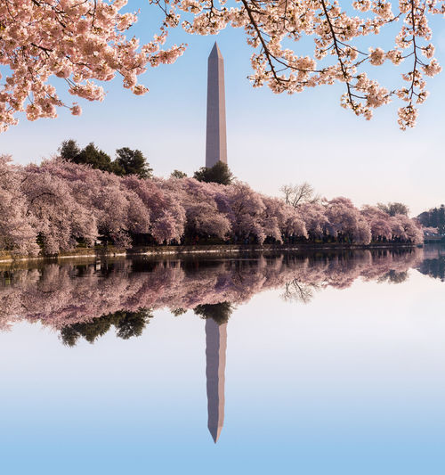 Reflection Of Washington Dc In Lake