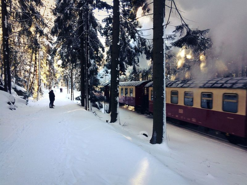 Winter Snow Cold Temperature Transportation Mode Of Transport Tree Weather Land Vehicle Outdoors Public Transportation Tram Road Nature Day No People Architecture Brocken Brockenbahn Dampflok Steam Train Harz