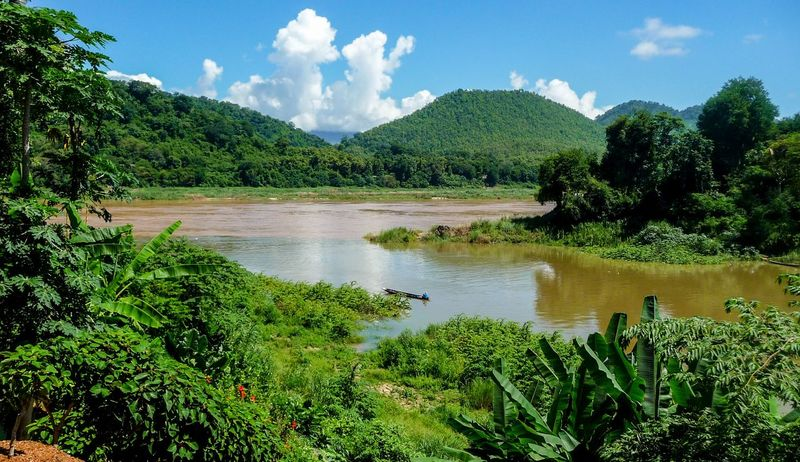 The Mouth of the River Beauty In Nature Cloud - Sky Day Green Color Growth Idyllic Khan River Lake Landscape Laos Luang Prabang Luangprabang Lush - Description Mekong River Nature Outdoors Reflection Rice Paddy Scenics Sky Tranquil Scene Tranquility Travel Destinations Tree Water