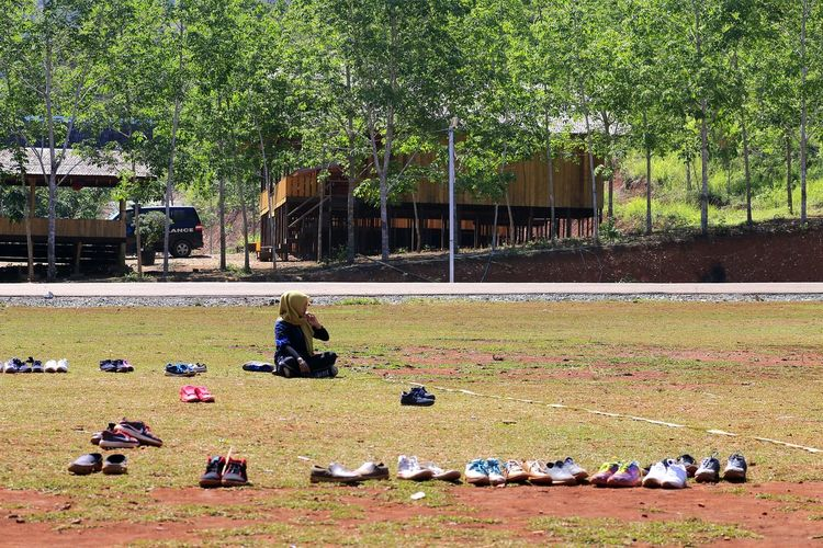 Shoe parking Capture Tomorrow Tree Grass Sky Outdoor Play Equipment