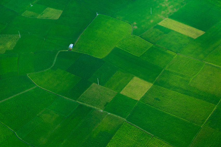 Aerial View Agriculture Day Field Grass Green Color Nature No People Outdoors Patchwork Landscape Soccer Field Stadium Tranquil Scene Tranquility Flying High Breathing Space Lost In The Landscape Perspectives On Nature Colour Your Horizn The Still Life Photographer - 2018 EyeEm Awards