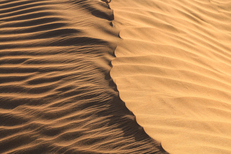 Desert. Desert Desert Beauty Nature Land Outdoors Outdoor Photography No People Sand Sky Dust Landscape Sand Dune Arid Climate Full Frame High Angle View Beauty In Nature Wave Pattern Natural Pattern Backgrounds Sunlight Pattern صحراء Empty Quarter