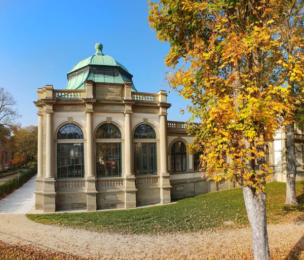 Bad Kissingen Autumn Leaves Tree Leaves Autumn Malephotographerofthemonth Germany Vacation Destination Tourist Attraction  Tree Politics And Government Clear Sky Autumn Window Sky Architecture Building Exterior Built Structure Arch Palace Historic Doges Palace History Façade