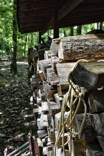 Wood Firewood Stacked Stack Stack Of Wood Stack Of Firewood Rope Awning Outdoors Up Close Bark