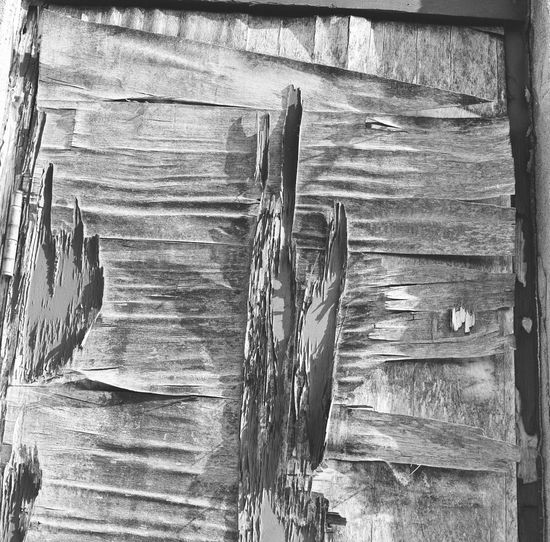 Close-up of wooden log cabin