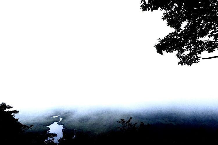コッタロ展望台からの夜になる瞬間 なんと車上荒らしが多いそうなので対策を #タンチョウの最大の生息地 #コッタロ湿原 #国立公園 #特別保護区 #釧路湿原の北東 #コッタロ湿原展望台 #砂利道 #コッタロ川 #湿原感 #野鳥 #低層湿原地帯 #トンボもたくさん #コッタロとはアイヌ語 #水が湧くところ #北海道道1060号 #クチョロ原野塘路線 #北海道 #道東 #原生の姿 コッタロ湿原 Tree Plant Sky Nature Copy Space No People Clear Sky Growth Low Angle View Day Branch Beauty In Nature Outdoors Silhouette Water Wet Tranquility Drop Rain
