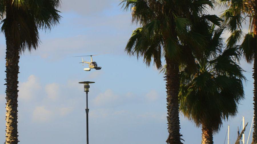 Toy Chopper