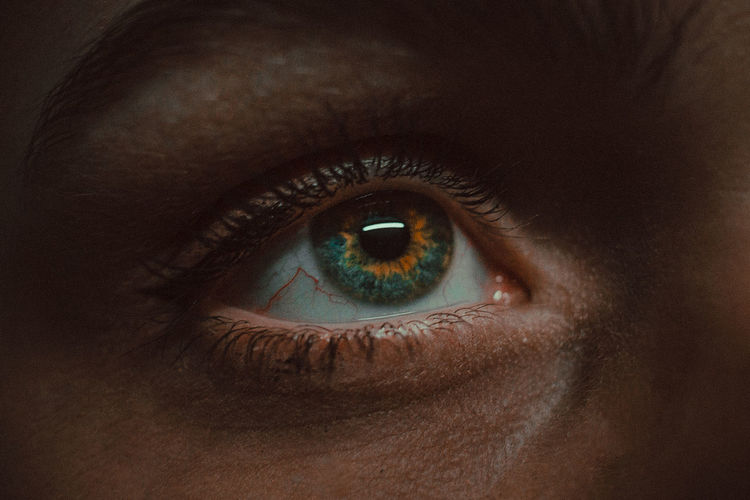 Close-up of man eye