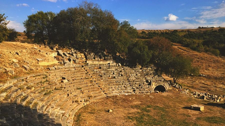 Arena of Lions